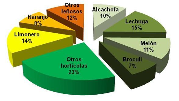 Distribución de cultivos de la Comunidad de Regantes del Campo de Cartagena
